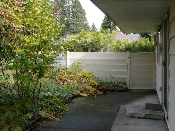 Private side yards with mature bushes and flowers