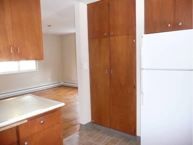 Plenty of cabinets in the kitchen with two large pantry closets