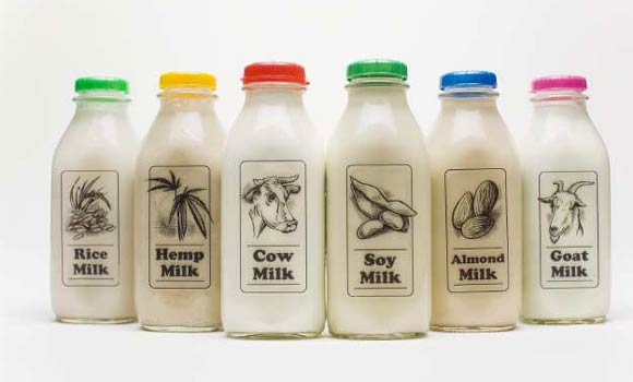 "A variety of ""milks"" and dairy substitutes, including, from left; rice milk, hemp milk, cow milk, soy milk, almond milk and goat milk. (Jay L. Clendenin / Los Angeles Times)"