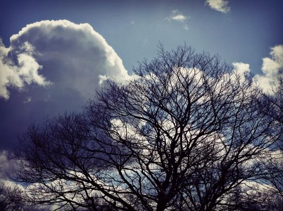 2013 03 18 Winter 03