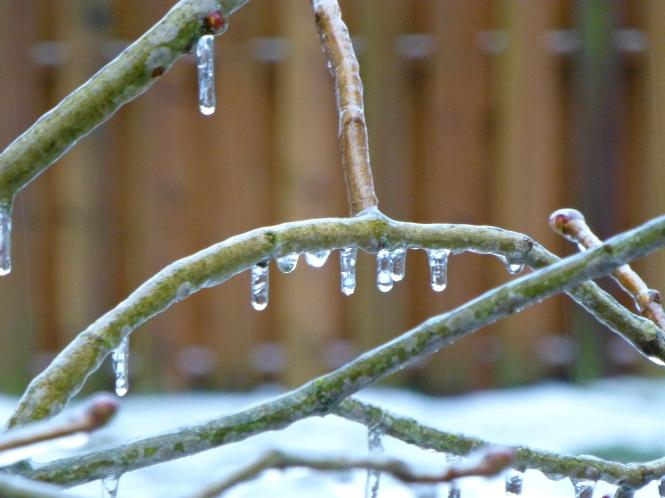 pm2014 03 2 Ice storm 1