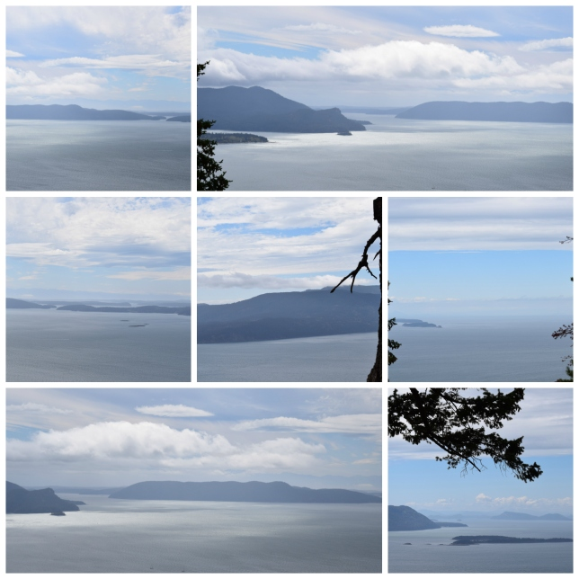 2016 08 21 Baker Preserve Hike Collage 2