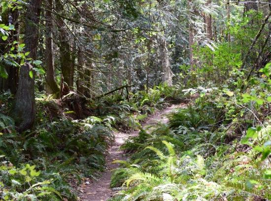 pm2016 08 21 Baker Preserve Hike (7)